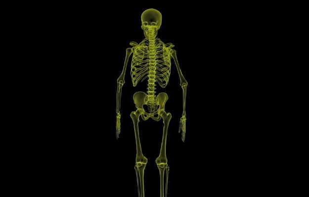 शरीर में प्राकृतिक रूप से मौजूद प्रोटीन पीकेए हड्डी से जुड़ी मांसपेशी को हुए नुकसान को ठीक कर सकता है: वैज्ञानिक
