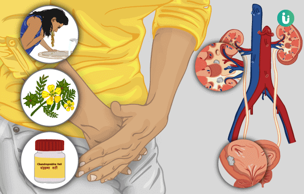 Ayurvedic Treatment Medicines Remedies Herbs For Kidney Stone Types Effectiveness And Risks