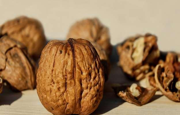 अखरोट के फायदे और नुकसान - Walnuts